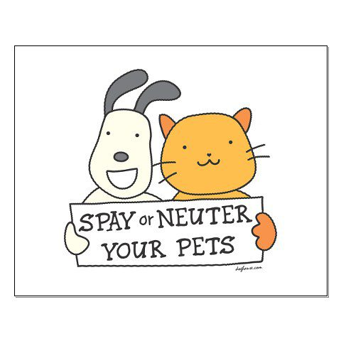 http://dog-harmony.org/wp-content/uploads/2017/07/spay-or-neuter3.jpg