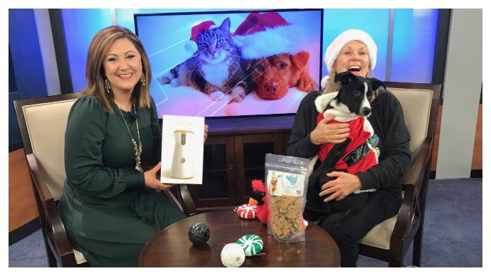 Nancy in the News: Gift ideas for your pets (WJHG)