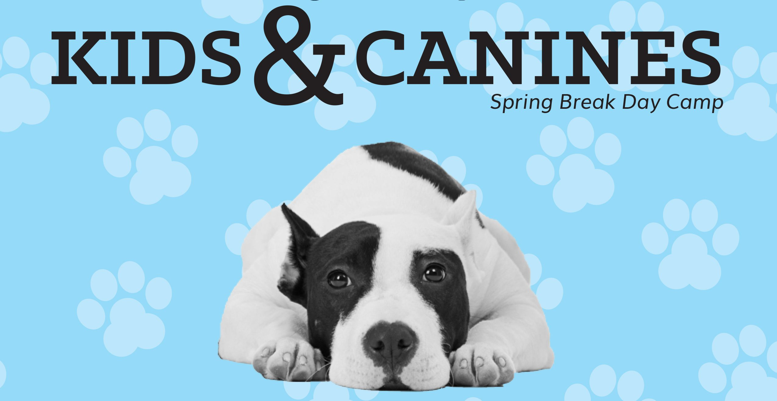 Dog-Harmony announces Kids & Canines: A Spring Break Camp