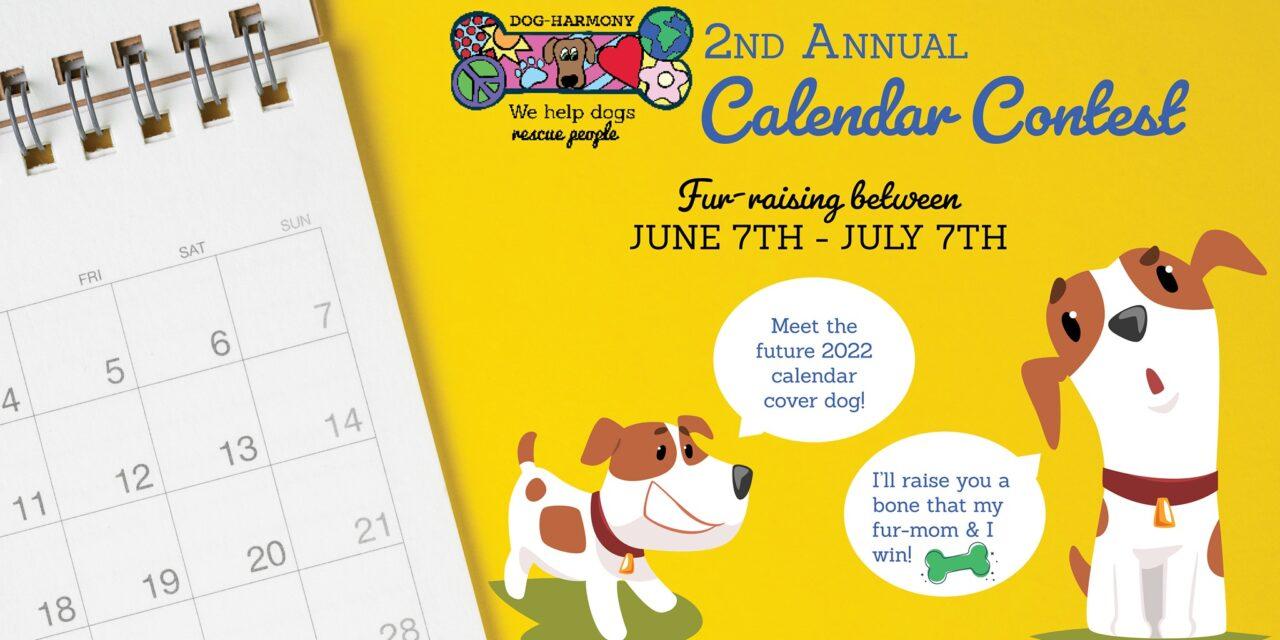 https://dog-harmony.org/wp-content/uploads/2021/06/calendar-contest-1-1280x640.jpg
