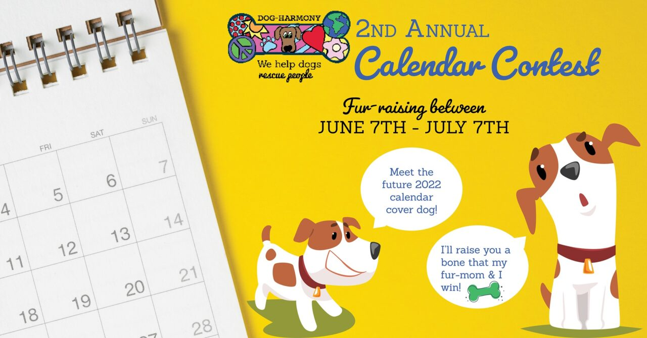 https://dog-harmony.org/wp-content/uploads/2021/06/calendar-contest-1-1280x670.jpg
